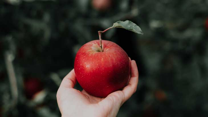 Image photo of apple